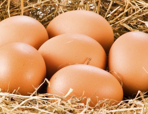 Shocking New Discovery on What Eggs Do to Your Heart