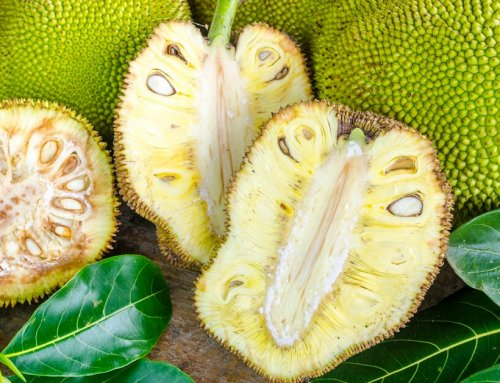 Vegetarians Replace Meat with This Nutrient-Rich Fruit