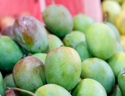 This Tasty Fruit Can Heal Your Gut